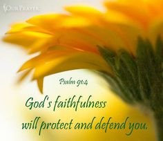 PSALM 91:4. God protects...and defends.