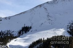 An image of an Avalanche caused by some Backcountry skiers in Silverton, Colorado on Kendall Mountains Southside.  Avalanches are always a 'High Country' risk, especially in warm weather.