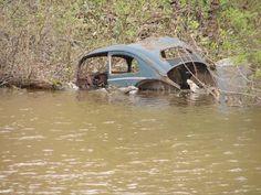Abandoned VW in Pond beside Spring Gardens Rd. in Burlington ON