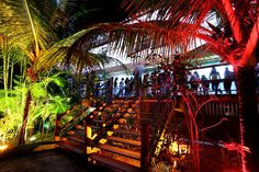 Sexta feira é dia de festa na Ilha dos Aquários em Porto Seguro. #Dicadepasseio ##noite #portotododia #night