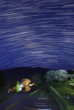 Star and Cherry tree in full bloom, Mitake, Misugi town, Tsu, Mie, Japan