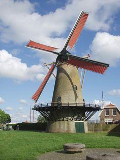 stellingmolen Den Haas te Zierikzee, Zeeland. Gebouwd in 1727. Het is een ronde stenen molen gedekt met eiken schaliën. De wieken hebben een vlucht van ruim 23,80 meter. Er zijn 3 koppels maalstenen.