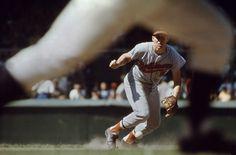 Baseball - Portfolio - Sports Photography Walter Iooss