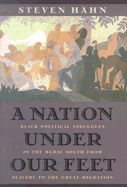 A Nation Under Our Feet: Black Political Struggles in the Rural South from Slavery to The Great Migration By Steven Hahn, 2004 Pulitzer Prize for History