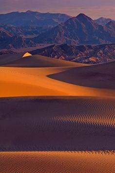 First light over Mesquite Flats Sand Dunes and Amargosa Range. Stovepipe Wells, Death Valley, California. - Death-Valley-National-Park-California-USA - Mike Reyfman Photography