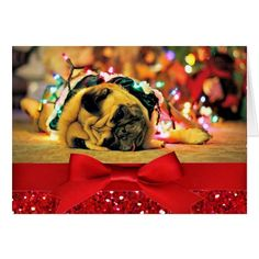 Christmas funny pug or add your pet photo card