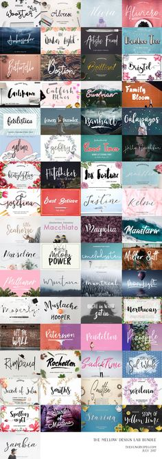 We are absolutely thrilled to team up with Kelly at Mellow Design Lab to bring you her very first bundle with us!This huge bundle includes a total of 65 beautiful fonts with loads of extras!! Normally priced at $1147, get them now for ONLY $15, that's about 99% off!! As always, our Complete License is included at no extra cost, allowing you to use all products for both personal and commercial use.