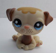 Littlest Pet Shop Pug #1753 brown creamy tan dog loose