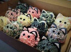 Kitty Cat Cupcakes...these are the BEST Cupcake Ideas!