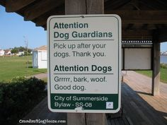 DOG TALK - SUMMERSIDE, PEI  #dogs #signs #bylaw #Summerside #PEI Lovely Creatures, Prince Edward Island, Funny Photos, Best Dogs, Spaces, Signs, Blog, Travel, Life