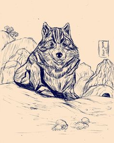 Lobo das montanhas.