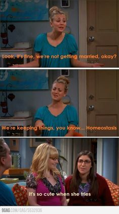 Big bang theory Dump A Day Funny Pictures Of The Day - 85 Pics Big Bang Theory Funny, Big Bang Theory Quotes, The Bigbang Theory, Brunch, Tv Quotes, Funny Quotes, Look At You, Just For Laughs, The Funny