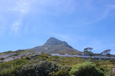 Cape Town holiday! http://www.pinterest.com/pin/572731277583180588/