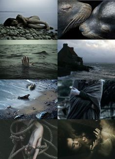 catarinaloss: a selkies song Story Inspiration, Writing Inspiration, Character Inspiration, Witch Aesthetic, Aesthetic Collage, Sea Witch, Photocollage, Outdoor Sheds, Magical Creatures