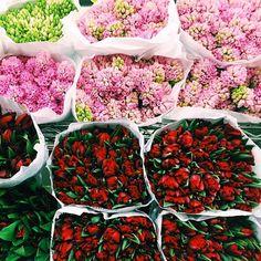 Finally we've survived to spring 😍💐🙌 #flowers #florist #floral #flowersstore #flowersshop #tulips #hyacinth #spring #springful #colorful #vibrant #red #pink #beautiful #mood #instagood #instaflowers #instalikes #photooftheday #tagsforlikes #vsco #bloomroom #kingshighway #brooklyn #newyork #nyc
