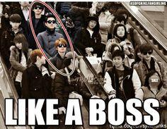 SuJu- Like a boss ;D KYUHYUN OPPA!!!!!!!!!!!!!!