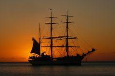 Eigene Kurzgeschichten, Meinungen/Reviews & Stuff: Gedicht 1: Trinkt aus Piraten, yoho