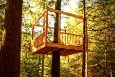 Building a tree perch, tree deck or treehouse is a DIY backyard project that will delight children Modern Tree House, Simple Tree House, Backyard For Kids, Backyard Projects, Backyard Designs, Outdoor Projects, Tree Deck, Play Houses, Tree Houses