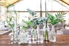 Take a look at 15 inspiring botanical wedding centerpieces in the photos below and get ideas for your wedding decoration! Muted Green Plants in Varied Glass Bottle Vases Succulent Wedding Centerpieces, Bottle Centerpieces, Simple Centerpieces, Wedding Vases, Wedding Table Decorations, Wedding Bouquets, Wedding Reception, Wedding Ideas, Wedding Themes