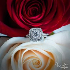For a Valentine's Day to remember… Uneek Fine Jewelry Round Diamond Engagement Ring with Cushion-Shaped Double Halo and Pave Double Shank, in 14K White Gold. Handcrafted in Los Angeles, CA    Style # LVS923-6.5RD - UneekJewelry.com