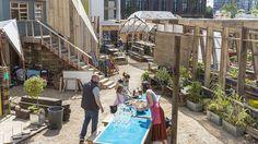 King's Cross Skip Garden - a sustainable urban garden with a twist