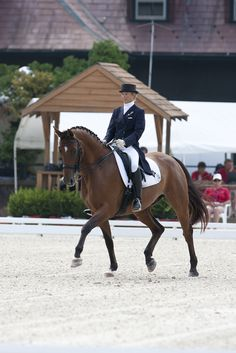 Susan Jaccoma's Exercises to Improve Canter Quality.  http://dressagetoday.com/article/never-stop-learning-dressage-12464