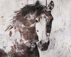 Gorgeous Horse Large Canvas, Horse Art, Brown Rustic Horse, Rustic Vintage Horse Wall Art Print up to by Irena Orlov Canvas Art Prints, Painting Prints, Arte Equina, Horse Wall Art, Horse Artwork, Horse Portrait, Horse Print, Equine Art, Original Paintings