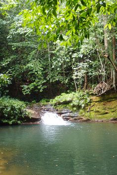 Tropical Rainforest Waterfalls | Borneo Tropical Rainforest Resort Waterfall | Flickr - Photo Sharing!