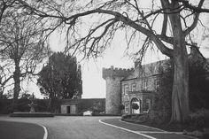 Weddings in Ireland. Wedding photography in Ireland Ireland Wedding, Irish Wedding, Civil Ceremony, Wedding Venues, Wedding Photography, Modern, Beautiful, Wedding Reception Venues, Wedding Places