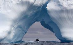Steve Irwin iceberg