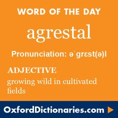 agrestal (adjective): Growing wild in cultivated fields. Word of the Day for 20 May 2016. #WOTD #WordoftheDay #agrestal