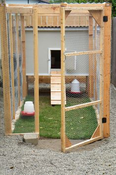 DIY Chicken Coops that You Need in Your Backyard