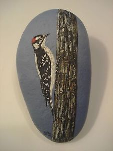 Downy Woodpecker hand painted on a rock by Ann Kelly.  *