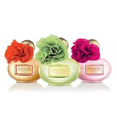 Coach fragrances -Coach Poppy Blossom, the orange, is my favorite. Just got the purple & it's ok. ----AB