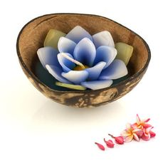 """£3.99 Coconut Candle - Blue Lotus Flower In Shell 