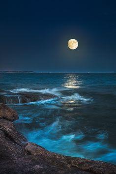海上生明月, Bright moon at sea, by 天香. Moon Photography, Landscape Photography, Shoot The Moon, Beautiful Moon, Beautiful Images, Moon Art, Nature Wallpaper, Nature Pictures, Landscape Pictures