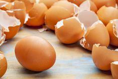 Поводы не выбрасывать яичную скорлупу и луковую шелуху