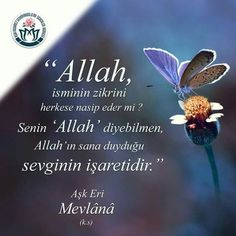 Allah Islam, Islam Muslim, Sufi, Slogan, Einstein, Sayings, App, Quotes, Instagram
