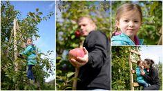 La magie de l'automne et la cueillette de pommes Family Photos, Blog, Apples, Fall, Family Pictures, Family Photography, Blogging, Family Posing
