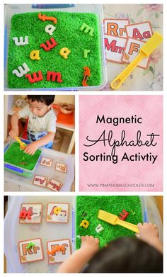 Magnetic alphabet sorting activity