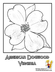 1000 Images About USA Coloring Pages On Pinterest