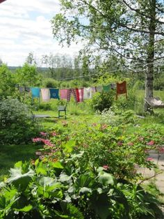 Love this scene - note the washtub AND the hammock! What a lovely place. Country Life, Country Living, Doing Laundry, Laundry Room, Simple Living, Cozy Living, Down On The Farm, Life Is Good, Outdoor Living