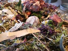 Florals, sage, and thyme incorporated into a moss nest by Avalon Faire Naturals Sage, Florals, Nest, Vegetables, Nature, Floral, Naturaleza, Salvia, Vegetable Recipes