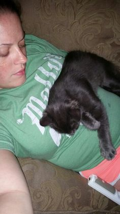 My snuggle kitty