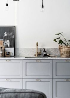 Scandinavian grey kitchen with styled countertops