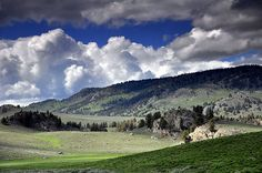 Lamar Valley, Yellowston NP. We saw Grizzly and wolves there!