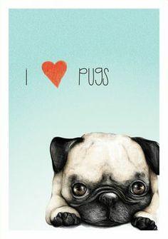Pugs by claramcallister.d… on Pugs by claramcallister. Raza Pug, Pugs And Kisses, Pug Art, Pug Pictures, Dog Photos, Black Pug, Pug Puppies, Tier Fotos, Pug Love