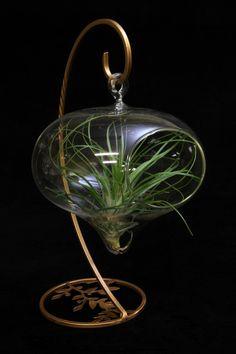 Raindrop Orb Terrarium on Small Tabletop Stand von PlantOddities, $14.95
