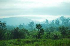 Landscape near Kumasi, Ghana.