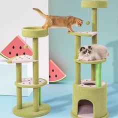Watermelon Cat Climbing Tower Tree Frame Cat Trees Cheap, Cool Cat Trees, Cool Cats, Watermelon Cat, Cat Climbing Tree, Cat Condo, Cat Room, Cat Accessories, Pet Life